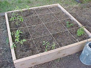 Add This Above Ground Garden Box To Your List Of Home