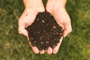 http://beingfrugal.net/wp-content/uploads/2012/09/compost.jpg