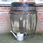 Saving Water and Money | Water Harvesting and Use Ideas